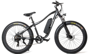 Bicicletas eléctricas Biwbik 11